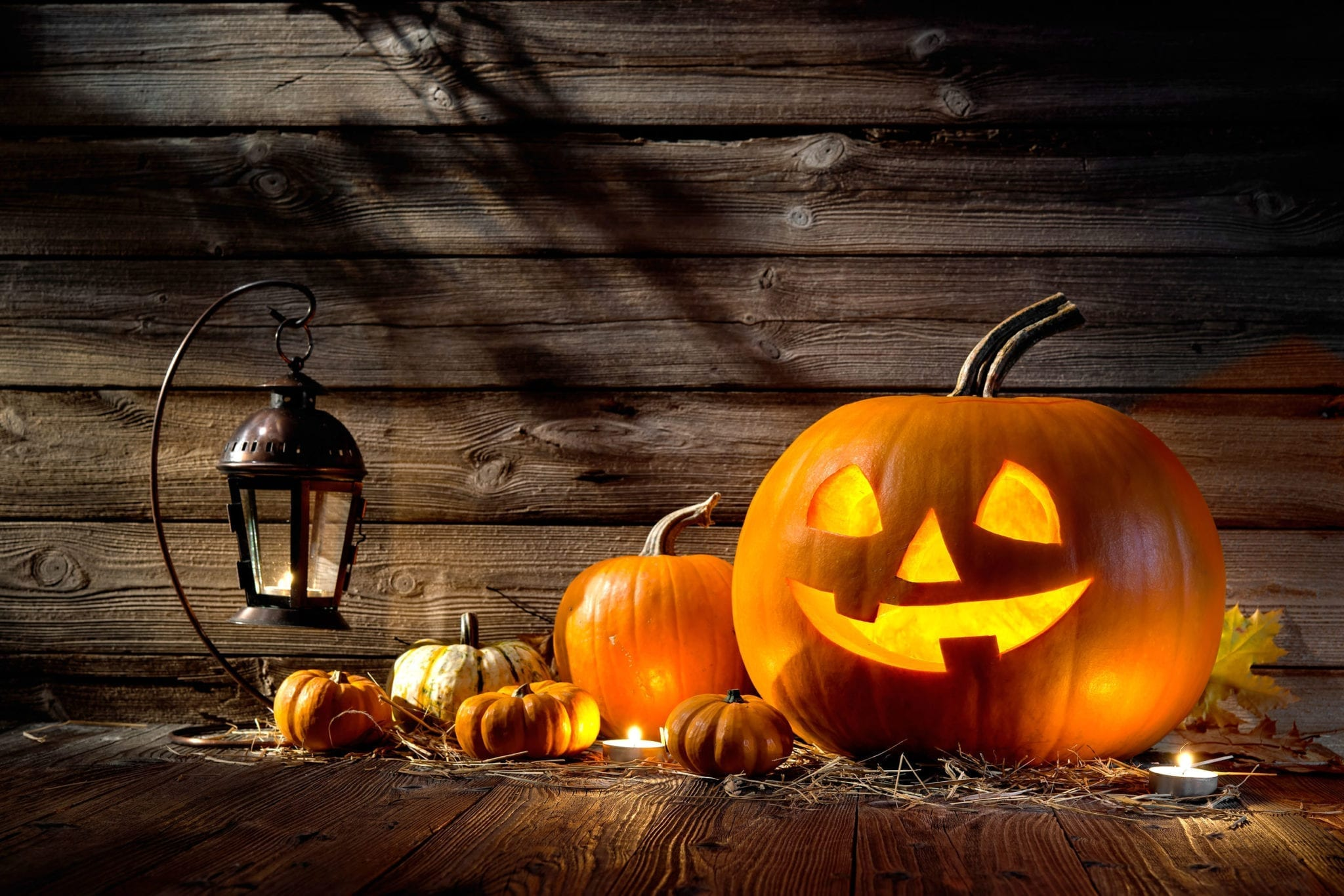 Beyond Razorblades: Why Halloween Is a Scary Holiday for Florida Kids